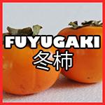 fuyugaki